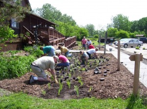 Rain Garden - Elkhart Environmental Center
